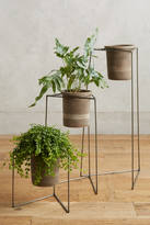 Anthropologie Plant Stand Trio