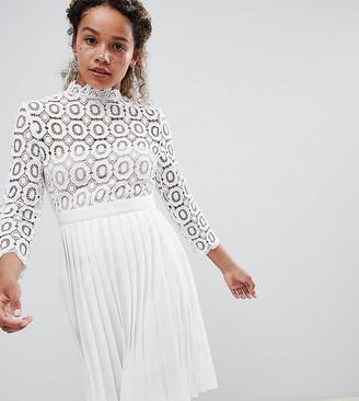 Little Mistress Petite 3/4 Sleeve Lace Top Pleated Midi Dress