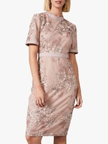 Phase Eight Evenna Embroidered Fitted Dress, Taupe