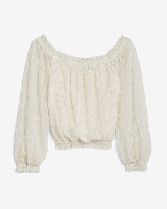 Express Embroidered Lace Off The Shoulder Top