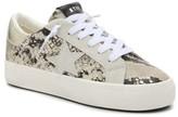 Steve Madden Starling Sneaker