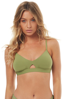 Seafolly Active Hybrid Bralette Separate Top Green