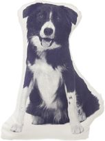 Areaware Border Collie Cushion