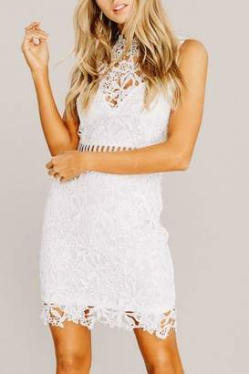 Pretty Little Things Whimsical Lace Dress