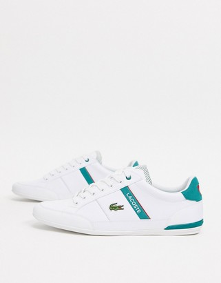 Lacoste chaymon sneakers in white leather green stripe