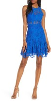 Foxiedox Ellingtone Embroidered Lace Dress