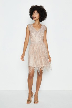 Coast Cutwork Lace Fit And Flare Short Dress