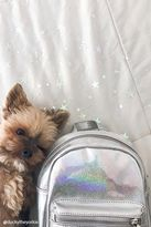 Forever 21 Holographic Mini Backpack
