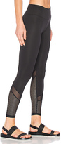 Lanston SPORT Blake Mesh Leggings in Black. - size L (also in )