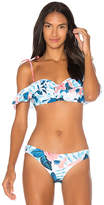 Seafolly Tropical Vacay Bandeau Top in Blue. - size Aus 10/ US 6 (also in Aus 12/ US 8,Aus 8/ US 4)
