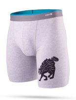 Stance Del Mar Boxer Shorts Whiskey Cat