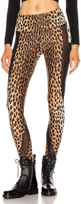 R 13 Engineered Legging in Cheetah & Black   FWRD