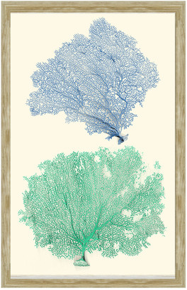 Vintage Print Gallery Blue And Green Sea Fan Corals I Framed Print
