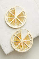 Noir Sliced Lemon Hoop Earrings