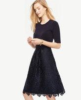 Ann Taylor Petite Lace Skirt Dress