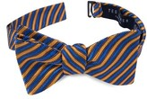 Ted Baker Men's Stripe Silk Bow Tie