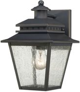 Quoizel Carson Outdoor Wall Lantern in Weathered Bronze