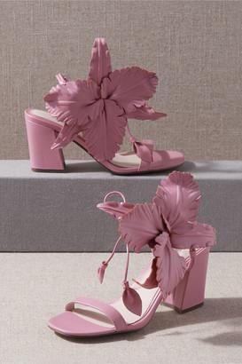 Cecilia NY Hibiscus Heels