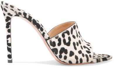 Gianvito Rossi 105 Leopard-print Calf Hair Mules - Leopard print