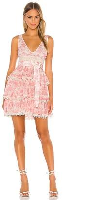 Lovers + Friends Peach Mini Dress