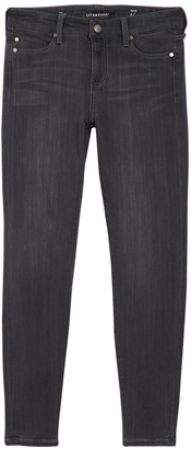 Liverpool Jeans Co Abby Skinny Jeans (Petite)