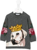 Dolce & Gabbana dog-intarsia sweater dress