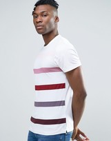French Connection T-Shirt with Stripe