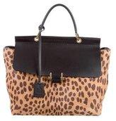 Lanvin Ponyhair & Leather Bag
