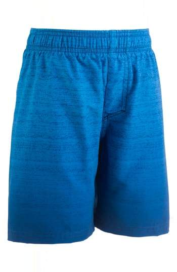 Under Armour Dipper HeatGear(R) Volley Shorts