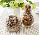 Pottery Barn Rock Vase Fillers