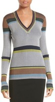 Diane von Furstenberg Women's Stripe V-Neck Sweater