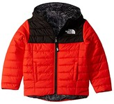 The North Face Kids Reversible Perrito Jacket (Little Kids/Big Kids) (Fiery Red) Boy's Jacket