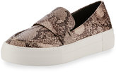 JSlides Snake-Printed Skater Loafer, Black/White