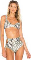 MinkPink Shady Fronds Bikini Top in Green