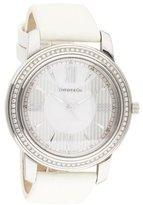 Tiffany & Co. Portfolio Watch