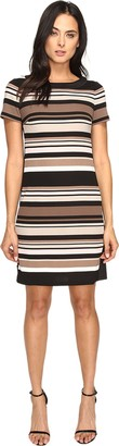 London Times Women's Short Sleeve Round Neck Scuba Crepe Shift Dress