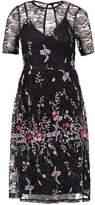Miss Selfridge Summer dress multi bright