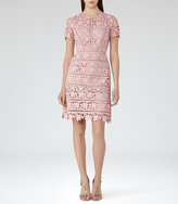 Reiss Orchid Lace Dress
