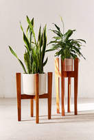 Urban Outfitters Knock Down Plant Stand
