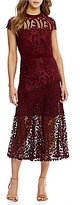 Antonio Melani Macie Lace Dress