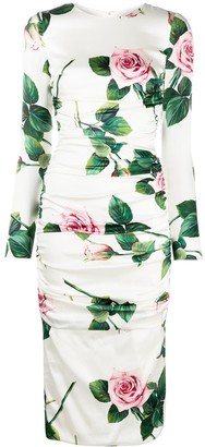 Dolce & Gabbana Rose-Print Bodycon Dress