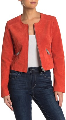 Bagatelle Collarless Suede Fitted Jacket