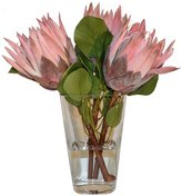 The French Bee Pink Protea In A Glass Vase