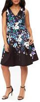 Wallis Floral Burst Fit & Flare Dress