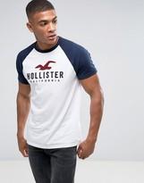 Hollister Crew T-Shirt Baseball Tech Logo Slim Fit In White/Navy