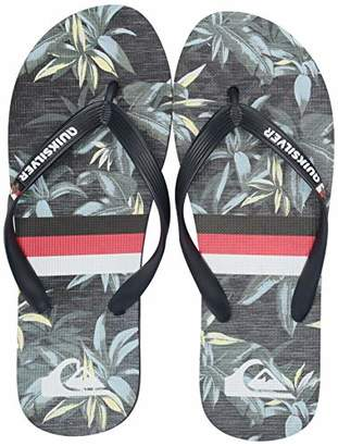 Quiksilver Men's Molokai Highline Hawaii VARIAB Flip-Flop Green/Grey