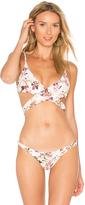 SKYE & staghorn Nirvana Wrap Bikini Top