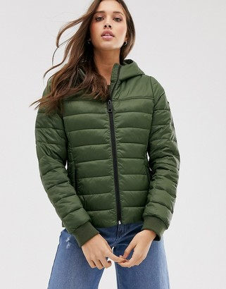 Hollister padded jacket in olive-Green
