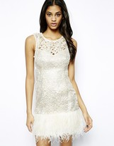 VIP Waxed Lace Dress with Feather Trim