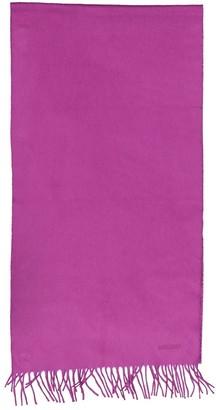 Hermes Purple Cashmere Scarves